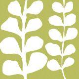 White Fern on Green Kunstdrucke von Denise Duplock