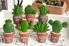 magnet belt on sale at reasonable prices, buy pieces/ lot)Creative lovely fleshy cactus plant fridge magnet from mobile site on Aliexpress Now! Rock Crafts, Felt Crafts, Diy And Crafts, Polymer Clay Projects, Diy Clay, Painted Rock Cactus, Painted Rocks, Cactus Craft, Cactus Planta