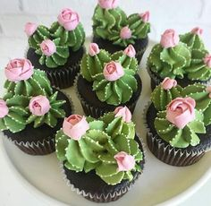 Oh my cupcakes! These are beautiful Oh my cupcakes! - Oh my cupcakes! These are beautiful Oh my cupcakes! These are beautiful Best Picture For cactus ja - Kaktus Cupcakes, Succulent Cupcakes, Cupcakes Flores, Garden Cupcakes, Mini Cakes, Cupcake Cakes, Taco Cupcakes, Themed Cupcakes, Wedding Cupcakes