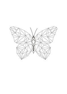 Geometrical Butterfly: