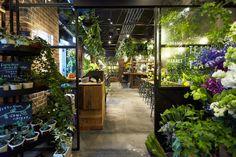 Aoyama Flower Market TEA HOUSEのオフィスインタビュー取材。