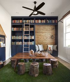library bookshelves and ladder in the playroom