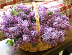 Mmm lilacs.  I can just smell 'em, can't you?
