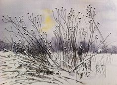 Watercolour inspired by a photo taken at Ruislip Lido last winter. The clouds were still heavy when the sun peeped from behind the clouds just for a moment, all watery-yellow, behind the slender stems and seed heads :) Watercolours, Watercolor Paintings, Stems, Illustrators, Leaves, Clouds, In This Moment, Sun, Inspired