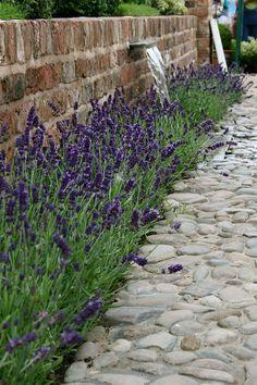 Moregeous at Tatton Garden Festival 2010 – Show Gardens - lavender garden Garden Paving, Garden Stones, Growing Lavender, Most Beautiful Gardens, Lavender Fields, Lavander, Garden Borders, Outdoor Landscaping, Back Gardens