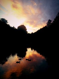 Dimmingsdale, Staffordshire by Jessica May Price (jessicamay___) on Twitter