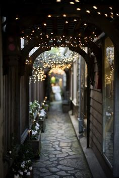archway with fairy lights. You really can't go wrong with fairy lights, in my humble opinion. Portal, Carmel By The Sea, Alleyway, To Infinity And Beyond, Jolie Photo, Twinkle Lights, String Lights, Hanging Lights, Twinkle Twinkle