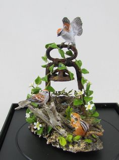 MM Sparrows-min