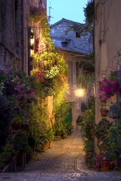Street in Spello, Umbria, Italy