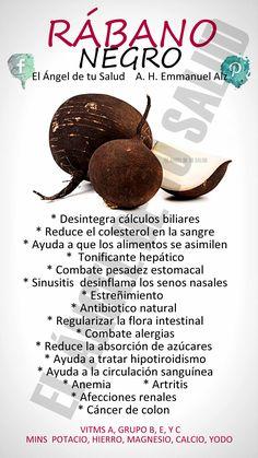 BENEFICIOS DEL RÁBANO NEGRO #PLANTASMEDICINALES #EMMANUELALZ #RABANONEGRO