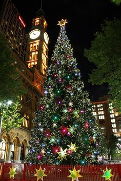 Christmas tree in Sydney, Australia... I want to see this