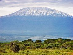 Kilimanjaro is the highest mountain in Africa and the highest 'walkable' mountain in the world. The trek to the summit is magnificent and spectacular 5 to 9 night undertaking, to rank amongst the greatest outdoor challenges on the planet.   I will be hiking it one day!