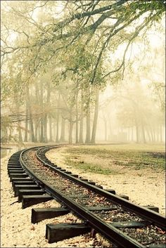 A foggy winter's morning at Hermann Park in Houston, Texas. By Train, Train Tracks, Train Rides, Cross Country Train Trip, Hermann Park, Ticket To Ride, Old Trains, Background Images, Railroad Tracks