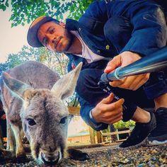 Arg --> Sydney ✌ @aram_gha Instagram photos | Websta