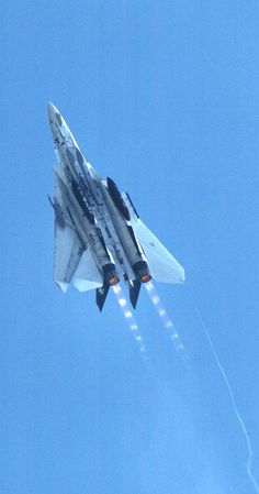 The F-14 in a pose that made her a legend afterburner with shock diamonds behind her.