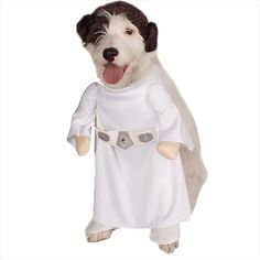 This Star Wars Princess Leia dog costume will have your pet looking just like Princess Leia. This is a licensed Star Wars accessory. Star Wars Halloween, Pet Halloween Costumes, Pet Costumes, Dog Halloween, Costume Ideas, Halloween Party, Costumes 2015, Halloween Items, Animal Costumes