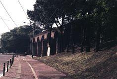 Los Arcos #film #filmisnotdead #filmcolor #kodak #canon #milugarfavorito #milugarfavoritopl #analog #analogicphotography #travel #Guatemala #streetphotography #color