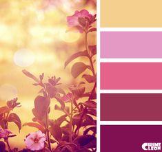 Color Palette, beige, misty rose, mauve, magenta, purple.