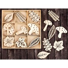 "Laser Cut Wood Icons In A Box Embellishments 1.5""-Leaves & Mushrooms 36 Pieces"