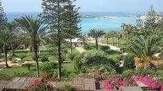 Nissi Beach, Ayia Napa, Cyprus, Beach Resorts, Awards, Holidays, Summer, Plants, Wedding