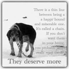 https://www.facebook.com/AnimalAdvocatesSociety?fref=photo