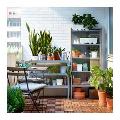 HINDÖ Greenhouse/cabinet, indoor/outdoor, gray