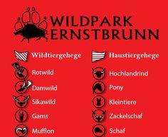 Family Day, Day Trips, Vienna, Small Animals, Wild Animals
