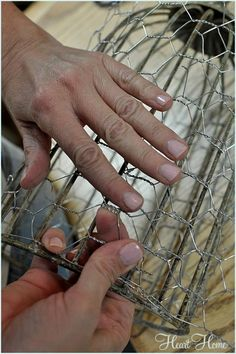 DIY Chicken Wire Cloche instructions - Awesome idea for the plants my cats love to get into inside!