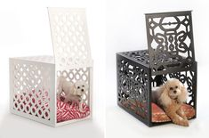 Innovative Pet Beds - From cozy canine campers to fishy feline shelters, there is a clear demand for innovative pet beds that are both functional and stylish. One of th...