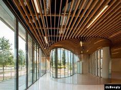 Le Courrier de l'Architecte | Shigeru Ban pris la main dans le panier