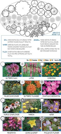Garden templates for different conditions using native plants
