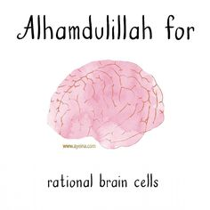 Alhamdulillah for rational brain cells. Quran Verses, Quran Quotes, Religious Quotes, Islamic Quotes, Alhamdulillah For Everything, All About Islam, Special Words, Allah Islam, Self Reminder
