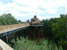 This New York Canopy Walk Will Drop Your Stomach