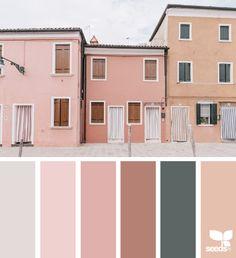 color view | featuring : Beatriz Escalante