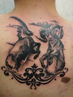 Goat Battle is listed (or ranked) 19 on the list Capricorn Tattoo Designs, – aquarius constellation tattoo Capricorn Sign Tattoo, Capricorn Constellation Tattoo, Pisces Tattoos, Tribal Tattoos, Native Tattoos, Cool Tattoos, Tatoos, Tattoo Son, Back Tattoo
