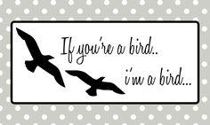 If you're a bird, i'm a bird…