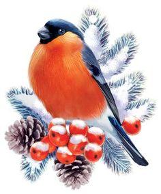 Christmas Labels, Christmas Art, Vintage Christmas, Diy Postcard, Pet Rocks, Animal Sketches, Winter Art, Christmas Illustration, Learn To Paint