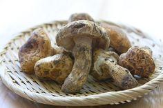 matsutake-dobin-mushi-mushroom-recipe-001 by food blogger steamykitchen.com