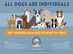 When Vegans Attack | vet-trek:   All dogs are individuals. Although...