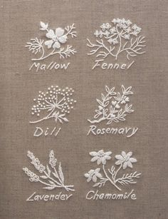 Broderies blanches