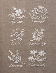 Herb embroidery sample | Onoe Megumi//