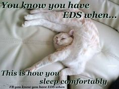You might be an Ehlers-Danlos Syndrome / EDS Zebra if... you can find the humor through the pain!