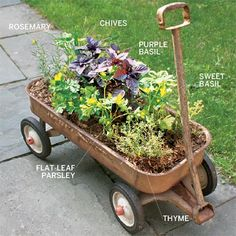 What a great idea! Use an old wagon as a mobile herb garden!