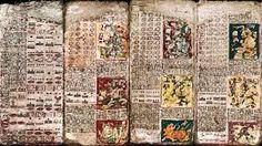 Resultado de imagem para Codex