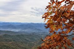 Top of Albert Mountain, Appalachian Trail hiking in stilettos: Weekend Adventure: Standing Indian Campground 2013