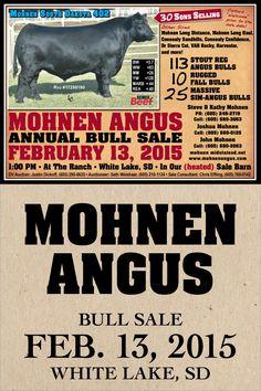 Mohnen Angus - Annual Bull Sale - Feb. 13, 2015