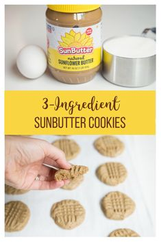 Sunbutter Cookies - This dessert is a protein-packed, sweet treat for kiddos with peanut allergies! These cookies are made with sunflower seed butter! Dog Food Recipes, Cookie Recipes, Dessert Recipes, Free Recipes, Meatball Recipes, Delicious Desserts, Nut Free Cookies, Allergies Alimentaires, Sunflower Butter