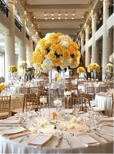 What about yellow and white roses combined with a shorter vase.