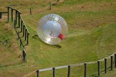 ZORB IN NEW ZEALAND : Created in New Zealand, Zorbing includes moving down a slope in a substantial straightforward inflatable ball. Go to Rotorua in New Zealand: the venue is open seven days, all consistently, be it rain, hail or sparkle!