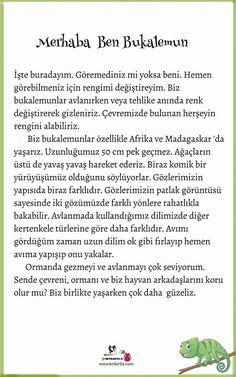 Learn Turkish, Turkish Language, Stories For Kids, Tech News, Drama Drama, Education, Learning, Children, Madagascar